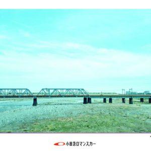 RC2016_wi_hashiri